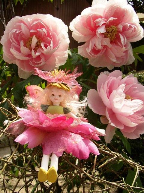 牡丹の妖精
